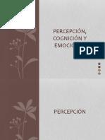 Clase 4 Percepción, Cognición y Emociones (Lite)