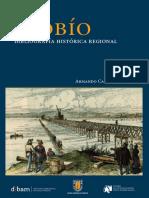 Biobio_ACartes.pdf