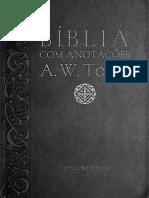 Biblia Tozer.pdf