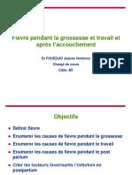 Fiévre Pdt La Grossesse Et Le Travail M1