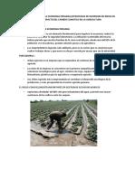 2.Efectos Del Riego en La Economia Peruana