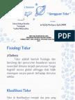 CSS GANGGUAN TIDUR.pptx