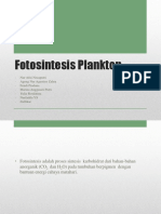 Fotosintesis Plankton