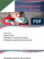 Terapia Enfocada en El Trauma