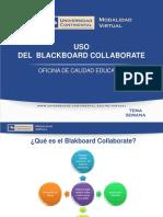 197282846 Blackboard Collaborate