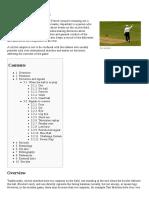 Umpire (Cricket)