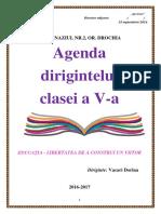 Agenda Dirigintelui V
