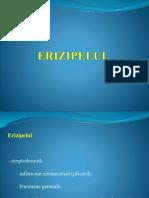 212701571-Erizipelul.pptx