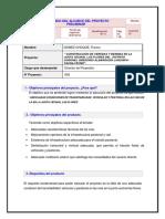 02-GESTION-DE-ALCANCE.docx