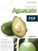 Guia de Cultivo de Aguacate Fagro