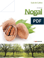 Guía de Cultivo del Nogal - Fagro
