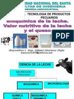 Presentacion3 Biquimica de La Leche (1)