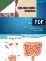 Obstrucción Intestinal Baja