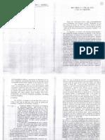 SÜSSEKIND,Flora_PapéisColados003.pdf