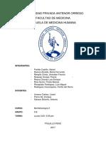Caso Clinico 3 - Morfo2