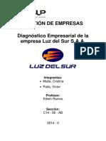 Diagnostico Empresarial Luz Del Sur