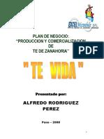 103519235 Plan de Negocio Zanahoria