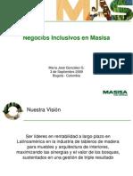Proyecto Masisa