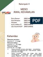 meso kel 4 (1)