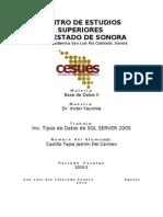 Inv. Tipos de Datos de SQL Server 2005