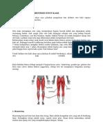 Pengertian Dan Definisi Otot Kaki