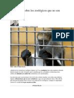 3 Creencias Sobre Los Zoológicos Que No Son Ciertas