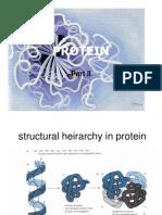 Protein 1