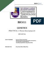 Lab Genetics 1
