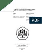 260110150013_luthfi Utami_pemeriksaan Kadar Flavonoid Total Ekstrak Sebagai Kuersetin Dan Penentuan Kadar Kuersetin