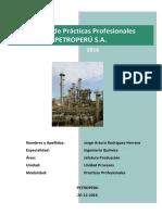 Informe Prácticas Profesionales JARH