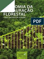 Economia Da Restauracao Florestal