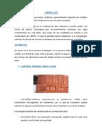 INFORME-ALBAÑILERIA