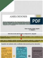 Amiloidosis EXPO