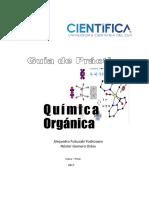 Química Orgánica-guía de Laboratorio