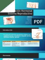 Regulación Hormonal Sistema Reproductivo (1)