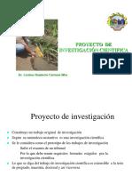 clase de proyectos.pdf