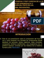 Presentación Resveratrol.pptx