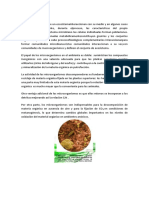 microbiologia bacteriana.docx