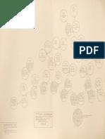 Genealogía de don Gerónimo de Boza y Solís.