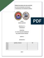PRACTICA 01 POROSIDAD.pdf