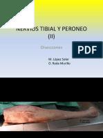 005 TIBIAL Y PERONEO II diseccion.pdf