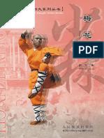 boxeo shao lin la flot.pdf