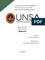 Magnesio Sss