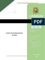 Reactivos Empleados en La Electroforesis de DNA