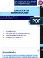 Organización del Sistema Nervioso Central