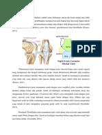 anatomi sendi