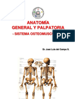 Anatomia General y Palpatoria