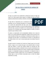 312198914-Obtencion-de-Gluten-a-Partir-de-Harina-de-Trigoo.docx