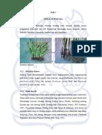 jbptitbpp-gdl-hotmariara-26837-2-2007ta-1.pdf
