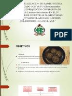 DIAPOSITIVAS-TERRONES (1)